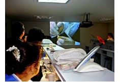 ASODÍN Centro Internacional de Investigaciones Biomecanicas en Odontologia Bogotá Colombia Centro