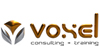 Voxel Consulting + Training
